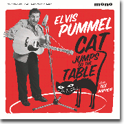 Elvis Pummel: Cat Jumps on the Table